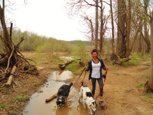 maxine walking dogs in creek