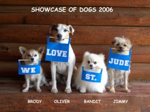 Showcase of Dogs 2006