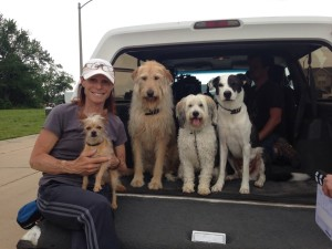 Debbie, founder of Paws for Effect, and some of her movie dogs.